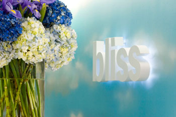 /Spa/17043-Bliss-Spa-at-W-Chicago-Lakeshore