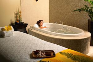 /Spa/13154-The-Westin-Kaanapali-Ocean-Resort-Villas#deals