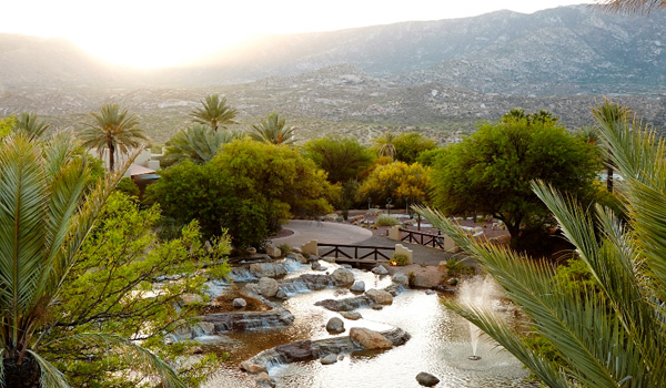 /Spa/127-Miraval-Resort-and-Spa
