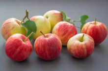 apples and recipes